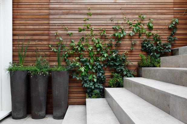 Contemporary Patio by Stefano Marinaz Landscape Architecture