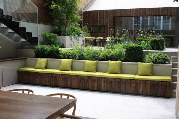 Contemporary Patio by Emma Griffin Garden Design