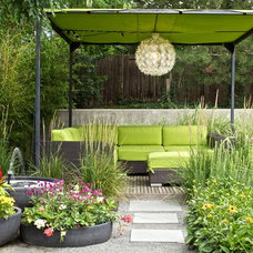 Midcentury Patio by Blu Design Group