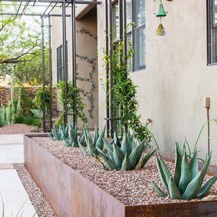 Foto di un patio o portico industriale di medie dimensioni e dietro casa con un giardino in vaso e una pergola