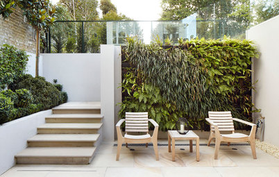 Bring More Green to Your Patio or Side Yard With a Living Wall