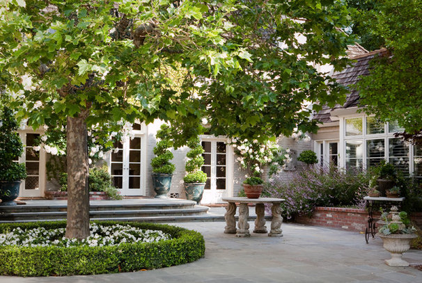 Traditional Patio by Design Focus Int'l Landscape Architecture & Build