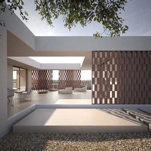 Idee per un patio o portico minimal nel cortile laterale con un giardino in vaso, ghiaia e nessuna copertura