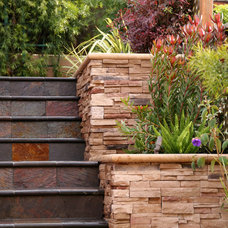 Modern Patio by Franciscan Landscape