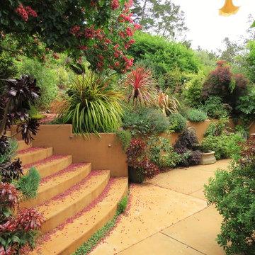 San Rafael CA Residential Garden