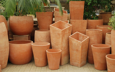 Beat the Frost With Natural Terra-Cotta Containers