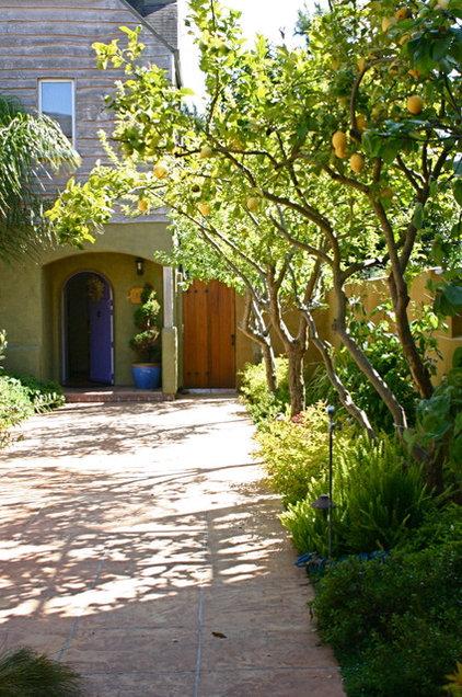Mediterranean Patio by Kathleen Shaeffer Design, Exterior Spaces