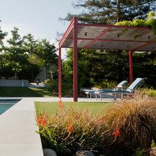 Contemporary Patio by Design Focus Int'l Landscape Architecture & Build