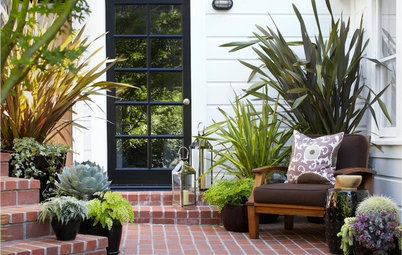10 All-Foliage Container Ideas for Your Summer Garden