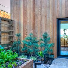 Midcentury Patio by Hudson Street Design