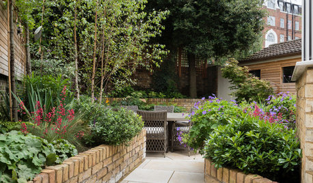 How to Create a Secluded Spot in an Urban Garden