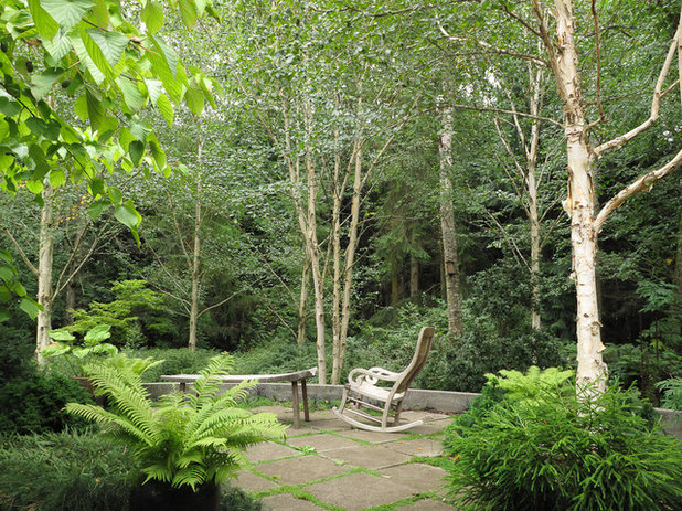 American Traditional Patio by Le jardinet