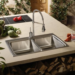 Semi-Professional Sink and Faucet -