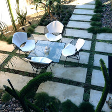 Midcentury Patio by Urban Green