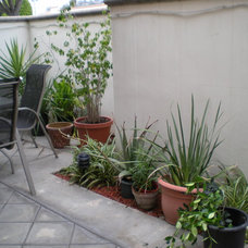 Eclectic Patio Shelley Turner
