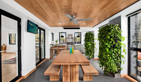 5 Reasons to Add a Living Wall to Your Home
