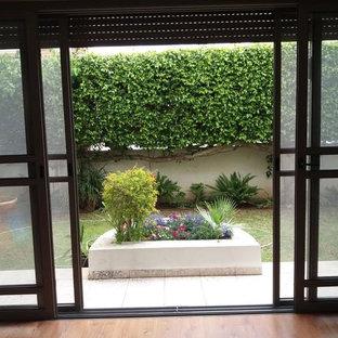 Ispirazione per un patio o portico classico di medie dimensioni e dietro casa con un giardino in vaso, graniglia di granito e nessuna copertura