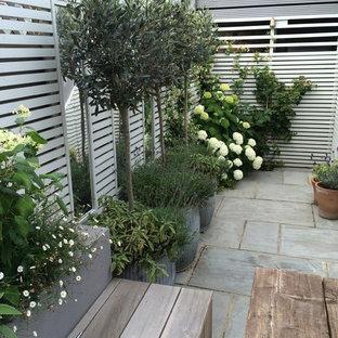 Diseño de patio minimalista, pequeño, en patio trasero, con jardín de macetas y adoquines de piedra natural