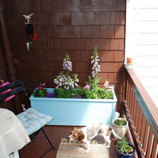 Traditional Patio Small deck