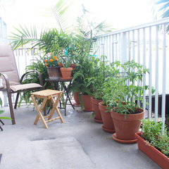 patio Small Gardens