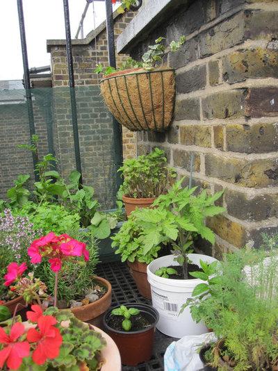 Eclectic Patio Small Gardens