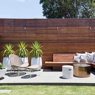 Esempio di un patio o portico moderno di medie dimensioni e dietro casa con pavimentazioni in cemento e nessuna copertura