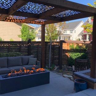 Idee per un piccolo patio o portico moderno dietro casa con un focolare, lastre di cemento e una pergola