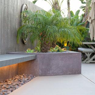 Ispirazione per un piccolo patio o portico tropicale dietro casa con pavimentazioni in cemento
