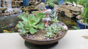 Succulent container garden with Gnome in antique replica bowl