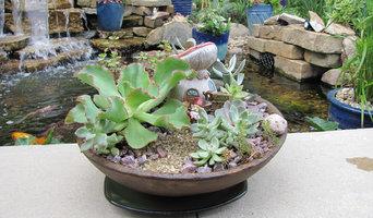 Succulent container garden with Gnome in antique replica bowl