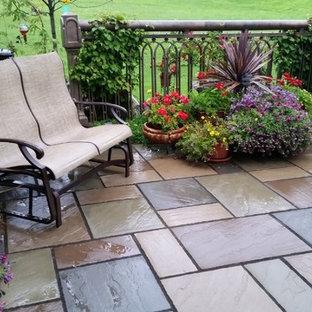 Foto di un piccolo patio o portico minimal dietro casa con piastrelle, un giardino in vaso e nessuna copertura