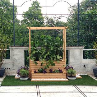 Patio - contemporary patio idea in Delhi