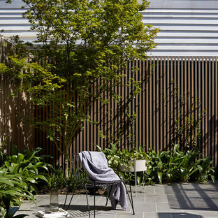 Inspiration for a contemporary backyard patio in Melbourne with tile and no cover.