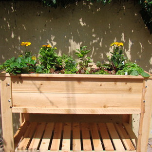 The City Salad Box