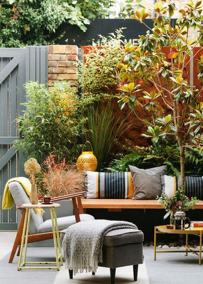 Contemporary Patio by Georgia Lindsay Garden Design