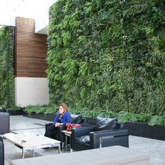 greenery office interiors. All Photos. 14 Recent Activity. Greenery Office Interiors F