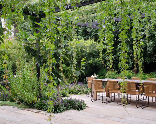 Trendy Backyard Concrete Paver Patio Photo In Melbourne With A Pergola