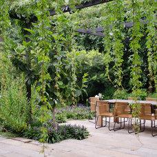 Contemporary Patio by Eckersley Garden Architecture