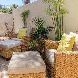 Esempio di un piccolo patio o portico bohémian dietro casa con un giardino in vaso, lastre di cemento e nessuna copertura