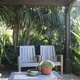 Idee per un piccolo patio o portico tropicale dietro casa con lastre di cemento e una pergola