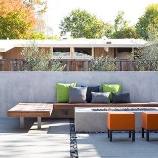 Esempio di un patio o portico moderno con lastre di cemento e nessuna copertura