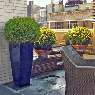 Inspiration for a contemporary stone patio container garden remodel in New York