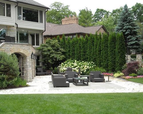 Emerald arborvitae home design ideas pictures remodel for Arborvitae garden designs