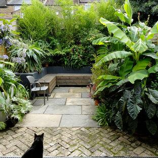 Modelo de patio exótico, sin cubierta, con jardín de macetas