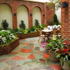 Tropical Patio by r.a.nelson-plantsman
