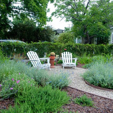 Traditional Patio by Poetic Plantings