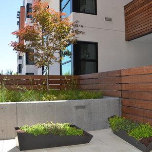 Diseño de patio moderno, de tamaño medio, sin cubierta, en patio trasero, con jardín de macetas y suelo de baldosas