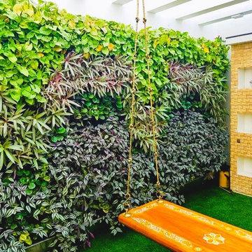 Vertical Garden/Green Walls
