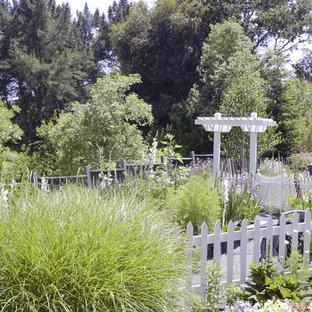 Foto di un grande patio o portico vittoriano dietro casa con un giardino in vaso, ghiaia e una pergola
