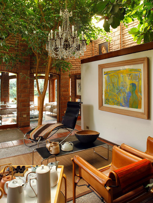 Indoor Trees | Houzz